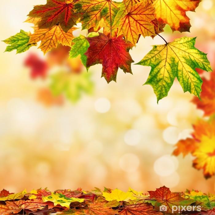Poster Fond d'automne avec des feuilles colorées - Saisons