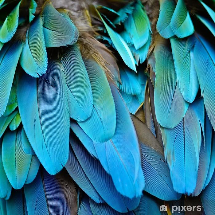 Naklejka Pixerstick Arlekin pióra ara - Surowce