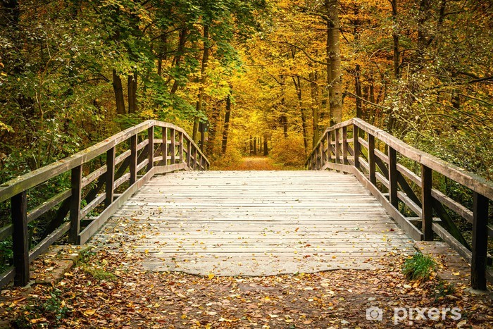 Sticker Pixerstick Pont dans la forêt d'automne - Thèmes