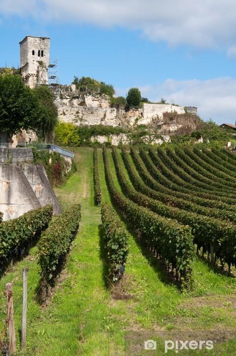 Fototapeta winylowa Winnica w Saint-Emilion, Francja - Tematy