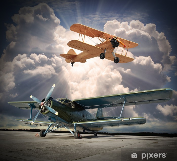 Retro style picture of the biplanes. Transportation theme. Vinyl Wall Mural - Themes