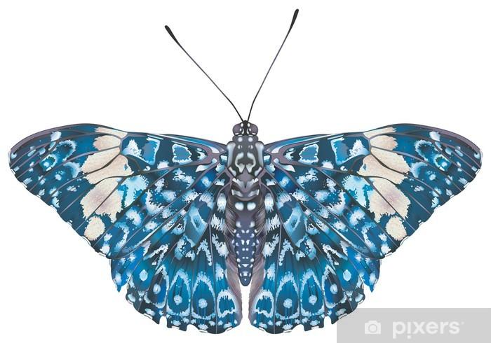 Sticker Pixerstick Craqueur Papillon rouge (amphinome hamadryas). crêtes de visage. - Sports d'extérieur
