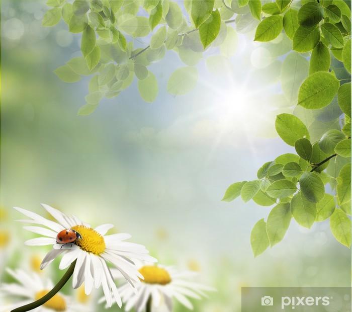 Plakát Beruška a daisy - Přírodní krásy