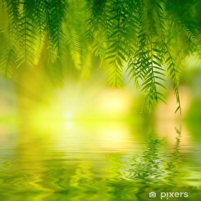 Fototapeta samoprzylepna Zielone liście tło. Shallow DOF - Tematy