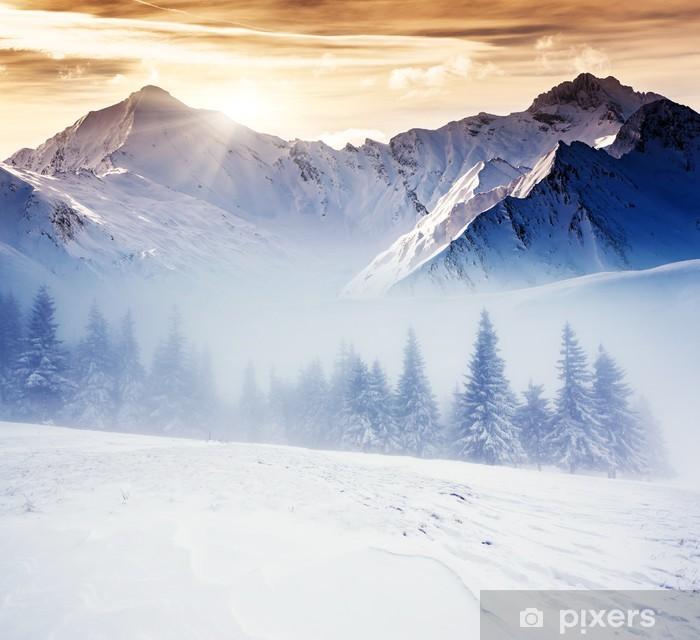 Vinyl-Fototapete Winterlicher -