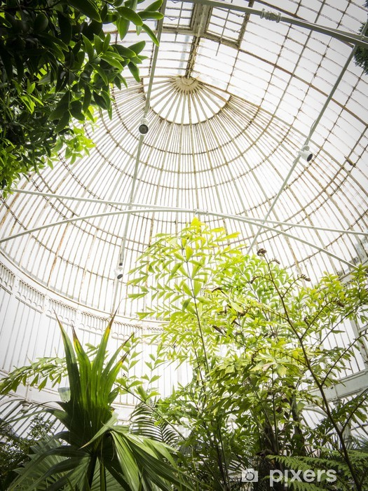 Fotomural Autoadhesivo Jardín Botánico de Belfast - Europa