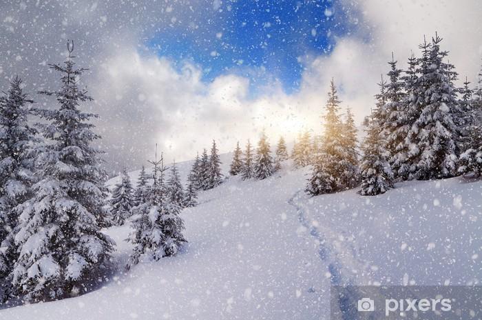 Naklejka Pixerstick Ścieżka w lesie góry - Pory roku