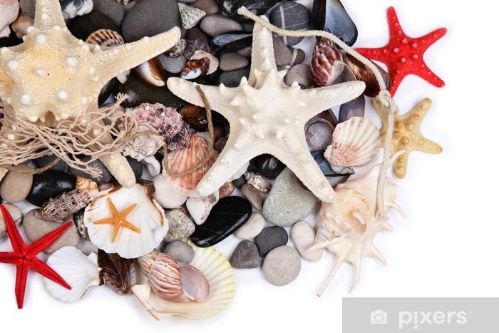 Nálepka Pixerstick Zblízka mořských kamenů a mušlí - Doplňky a věci