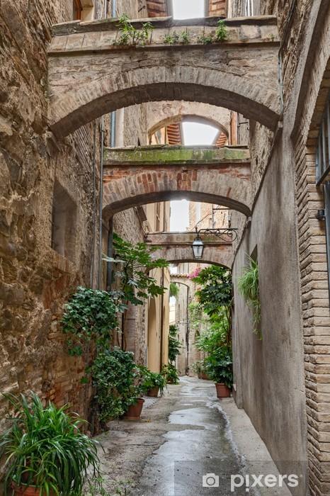 Papier peint vinyle Antique italien alley -
