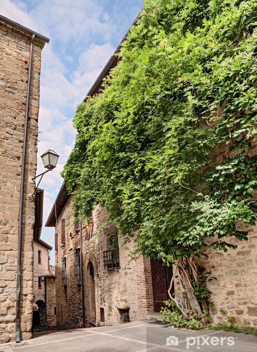 old alley in Umbria , Italy Vinyl Wall Mural - Europe