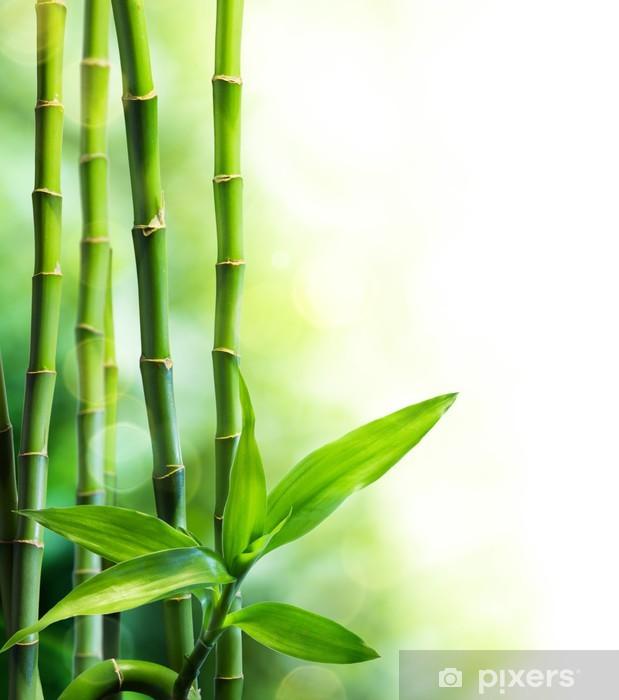 Fototapeta winylowa Łodygi bambusa i wiele wiązki światła - Tematy