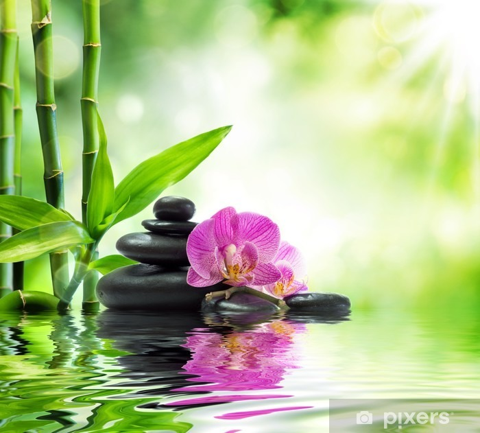Background spa - orchids black stones and bamboo on water Pixerstick Sticker - Themes