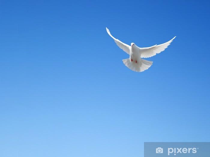 Papier peint vinyle Colombe blanche qui vole dans le ciel - Oiseaux