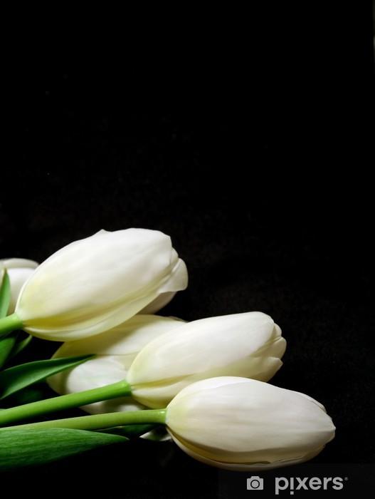 Fototapeta winylowa Białe tulipany - Tematy