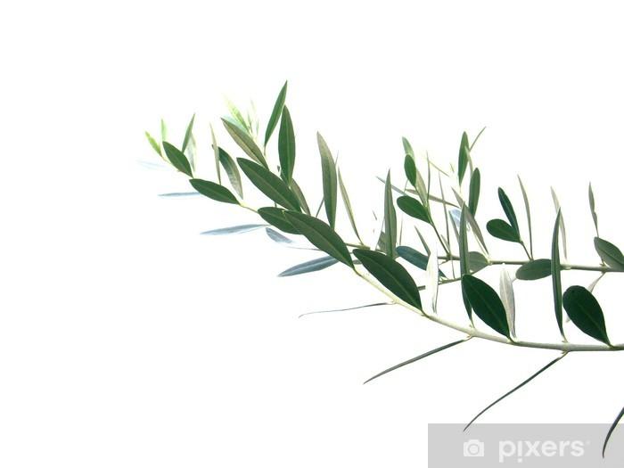 rameau d'olivier Pixerstick Sticker - Olives