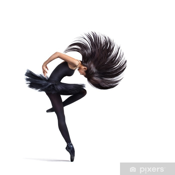 the dancer Poster - Wall decals