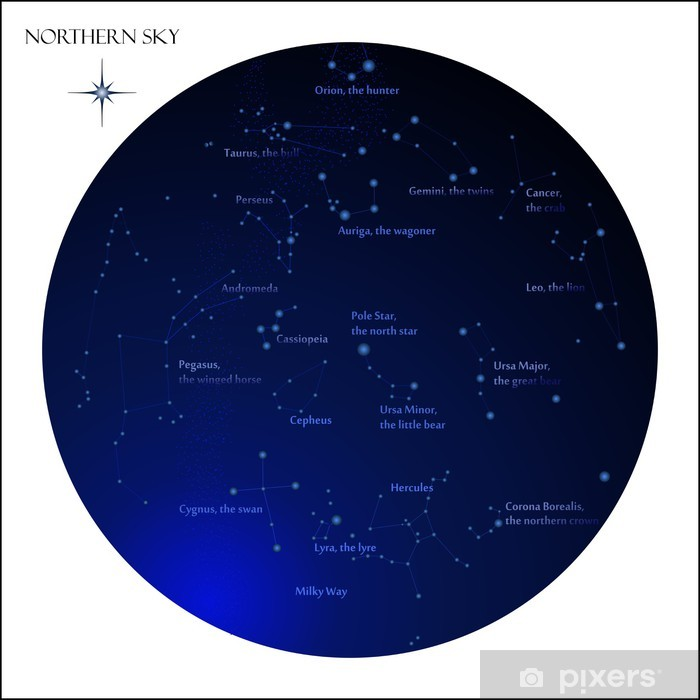 Star Map Northern Sky Constellations Wall Mural Pixers We Live