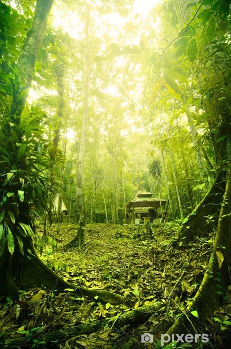 Tropisk regnskov i Malaysia om morgenen med tåge Vinyl fototapet -