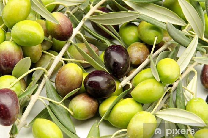 Papier peint vinyle Olives fraîchement récoltées - Olives