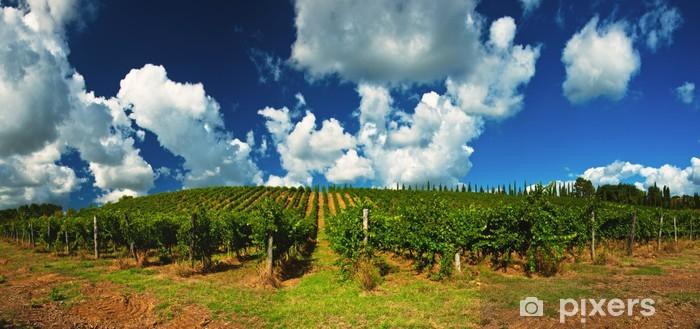 Vinyl Fotobehang Mooie wijngaard in Toscane - Europa