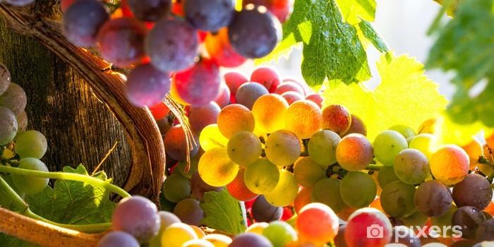 Fototapeta winylowa Winogrona tęczy - iStaging