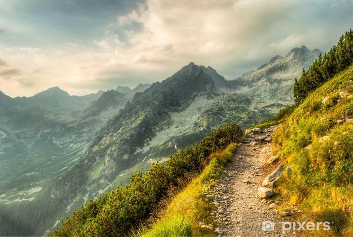 Vinil Duvar Resmi Dağlarda yol -