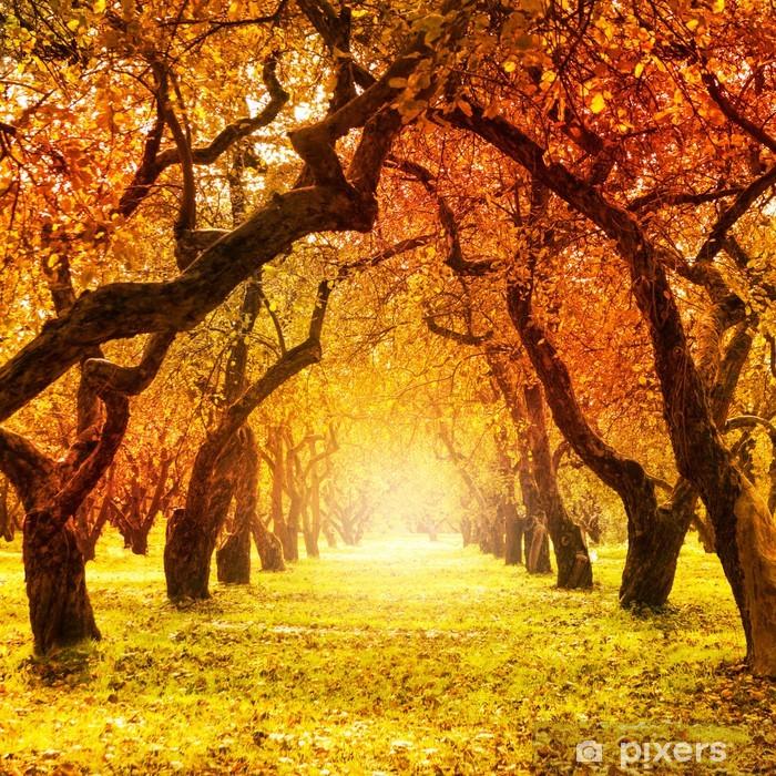 Autumn. Fall. Autumnal Park Pixerstick Sticker - Themes