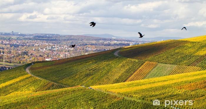 Vinyl-Fototapete Ausblick ins Tal, Weinberge im Herbst, Schnait - Landwirtschaft