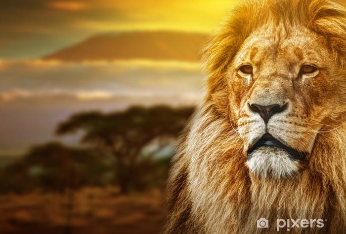Fotomural Estándar Retrato del león en el fondo de sabana y el monte Kilimanjaro - Temas