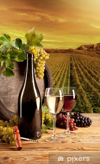 Wine in vineyard Washable Wall Mural - Themes