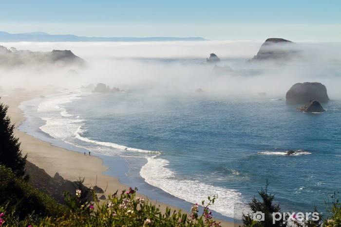 Carta da Parati in Vinile Nebbia mattutina lungo la costa a Brookings, Oregon - Acqua