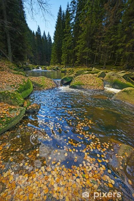 Vinyl-Fototapete Fluss mit gelben Herbstlaub - Themen