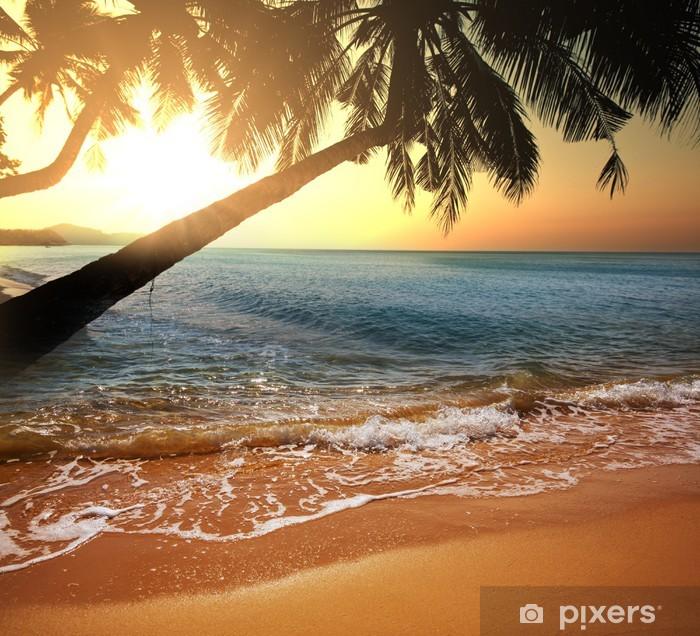 Fototapeta winylowa Tropikalna plaża - Przeznaczenia