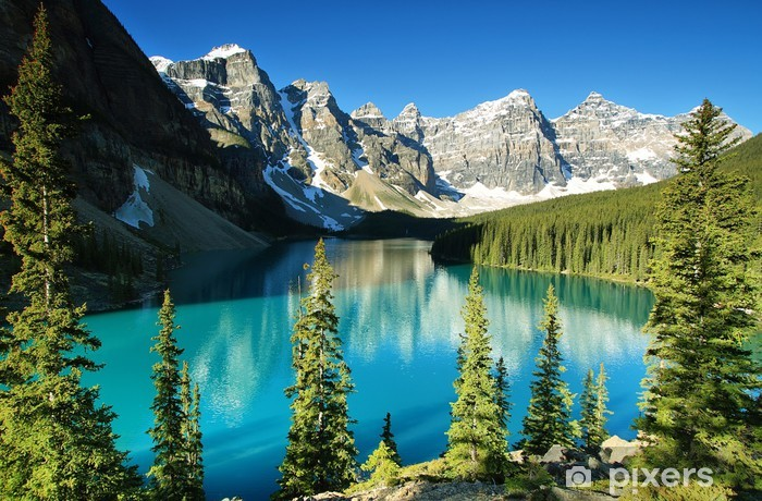 Lake Moraine, Banff national park Vinyl Wall Mural - Summer