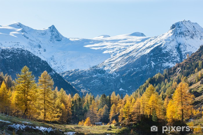 Fototapeta winylowa Widok z alp dolinie w kolorach jesieni - Lasy