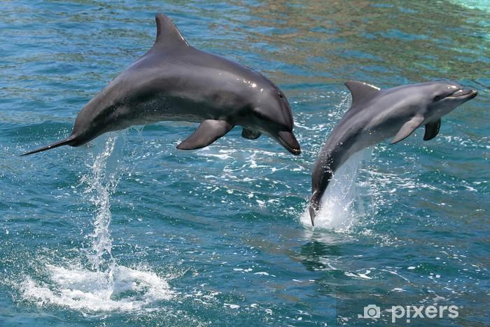 Sticker Pixerstick Dauphins sautant hors de l'eau - Thèmes
