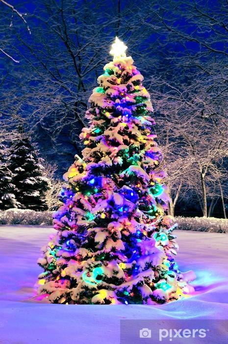 Fotobehang Versierde Kerstboom Buiten Met Verlichting Bedekt Met