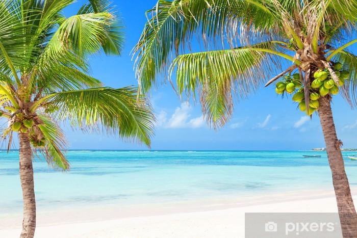 Vinilo Pixerstick Playa tropical con palmeras y aguas transparentes - Palmeras