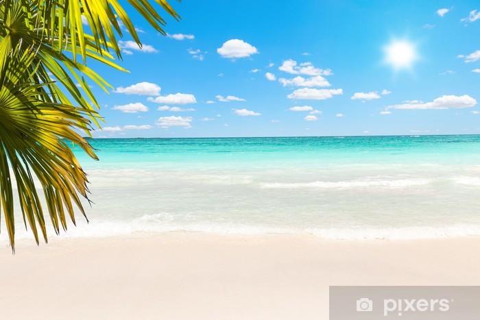 Papier peint vinyle Superbe plage des Caraïbes avec ses eaux transparentes - Palmiers