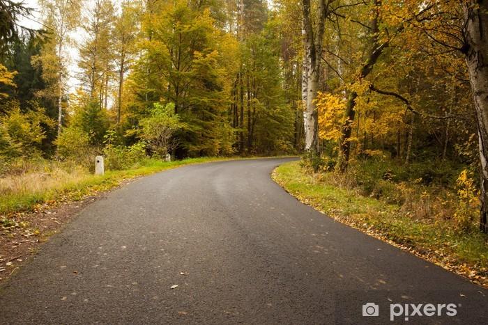 Papier peint vinyle Route de campagne le long des arbres dans la forêt luxuriante - Forêt