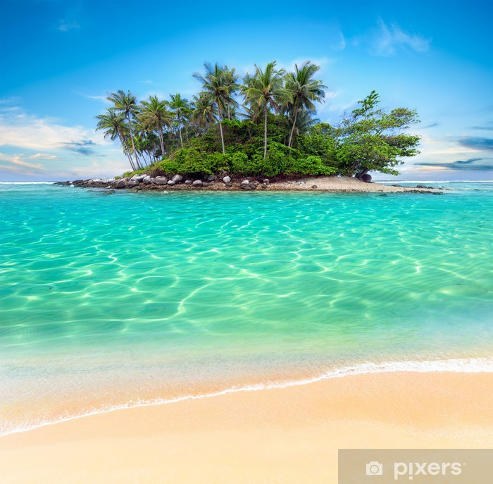 Tropical island and sand beach exotic travel background Pixerstick Sticker - Palm trees