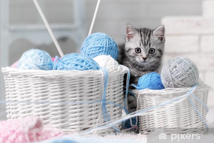 Fototapeta winylowa Kotek w koszu z kulkami z przędzy - Tematy