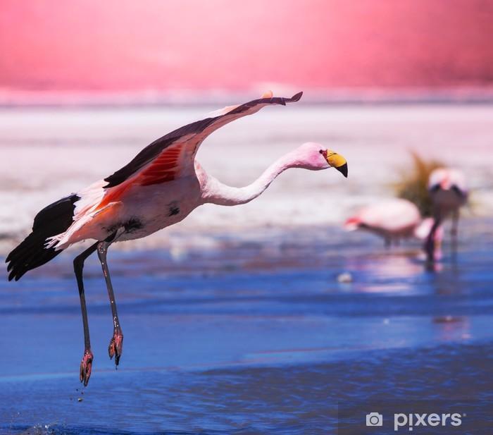 Fotomural Estándar Flamingo - Temas