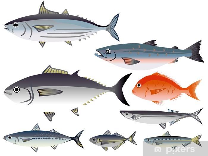Vinylová fototapeta Bílá ryba _ - Vinylová fototapeta