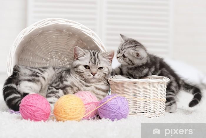 Fotomural Estándar Dos gatos en una canasta con bolas de hilo - Temas