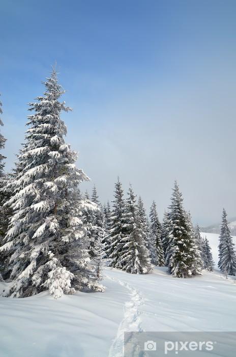 Vinyl-Fototapete Pfad im Schnee - Jahreszeiten