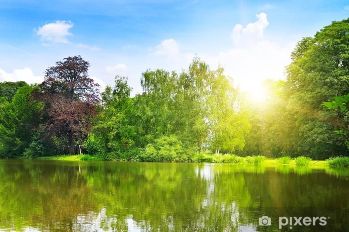 Carta da Parati in Vinile Pittoresco lago nel parco d'estate - Stagioni