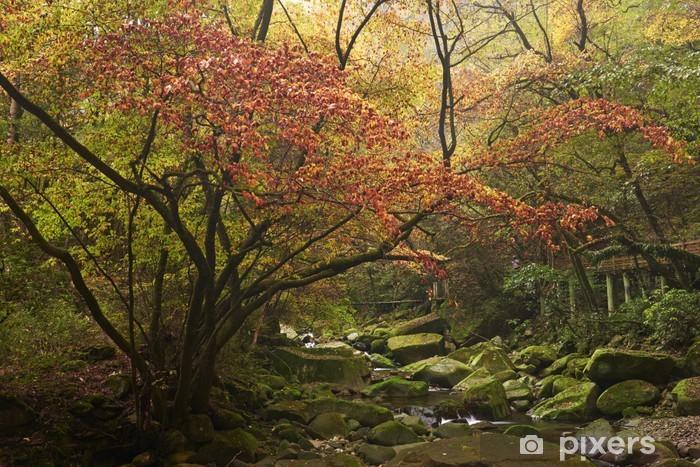 Papier peint vinyle Paysage d'automne. - Asie