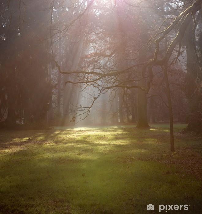Papier peint vinyle Forêt de brouillard du matin. - Animaux imaginaires