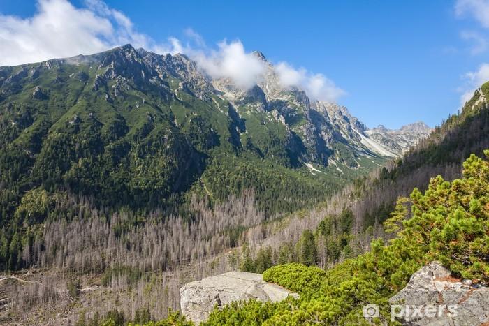 Sticker Pixerstick Belle vue dans les Tatras - Thèmes